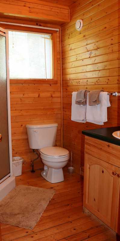 Walk-in Shower in main bathroom